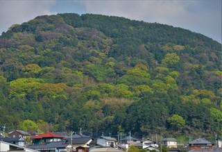 2004181531宮地岳の新緑・在自の「対馬見通り」から撮影5408.JPG