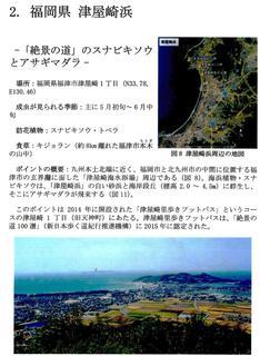 〈おしらせ〉0154:�A子書籍・津屋崎浜「アサギマダラに会いに行こう」.jpg