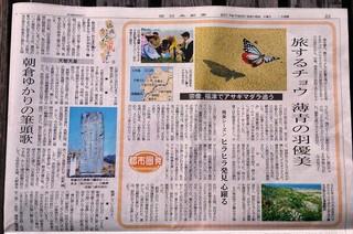 〈マスコミ紹介〉:1705160624アサギマダラ掲載の17年5月16日付西日本新聞004.jpg