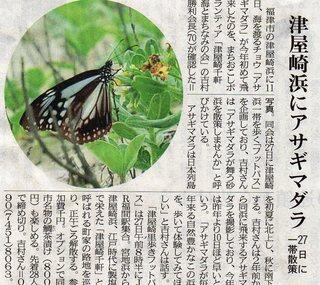 〈事務局日記〉0239:�@アサギマダラ西日本新聞掲載.jpg