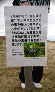 〈事務局日記〉0257:�@1511101303掲示板設置・「津屋崎浜」で005.jpg