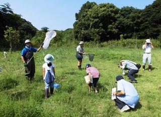 〈企画事業〉100・�@1308090959優「竹尾緑地」昆虫採集18.JPG