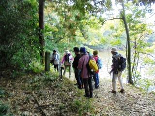 〈企画事業〉177:�@1711141032道標前で植物の説明を聞く参加者・「万葉古道の植物探訪」999.JPG
