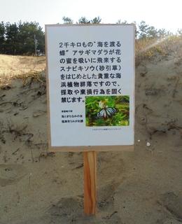 〈企画事業〉179:�@1803130820優東側の海浜植物保護掲示板・「津屋崎浜」1882.JPG