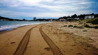 写真1806280630海岸清掃の�滑ツ境開発のキャタピラー跡014.JPG